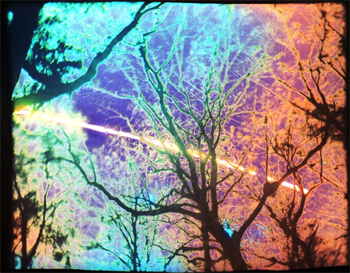 2013_Solargraphy